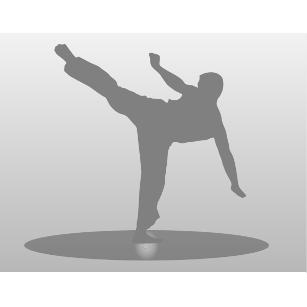 Karate Kick PNG images