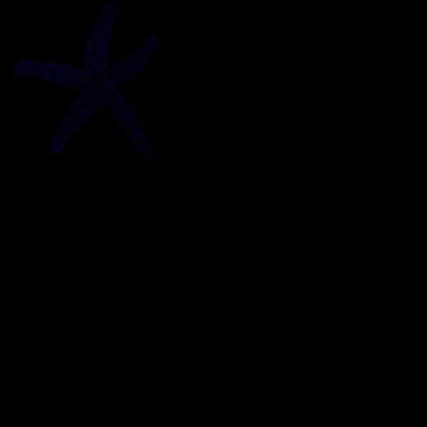 Dark Blue Starfish PNG image