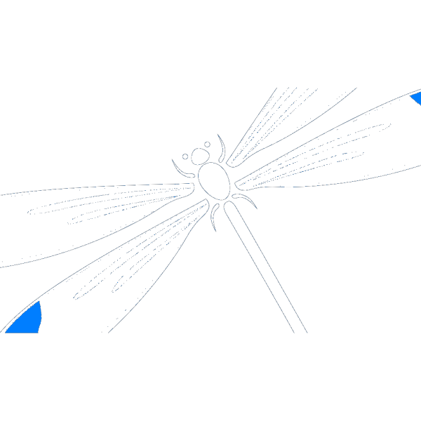 Dragonfly In Flight PNG clipart