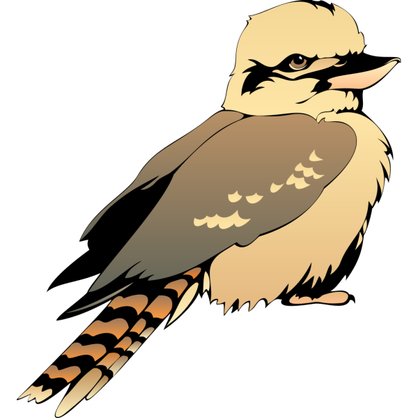 Young Bird PNG images