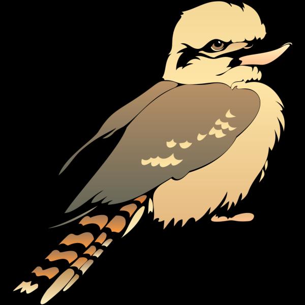Young Bird PNG Clip art