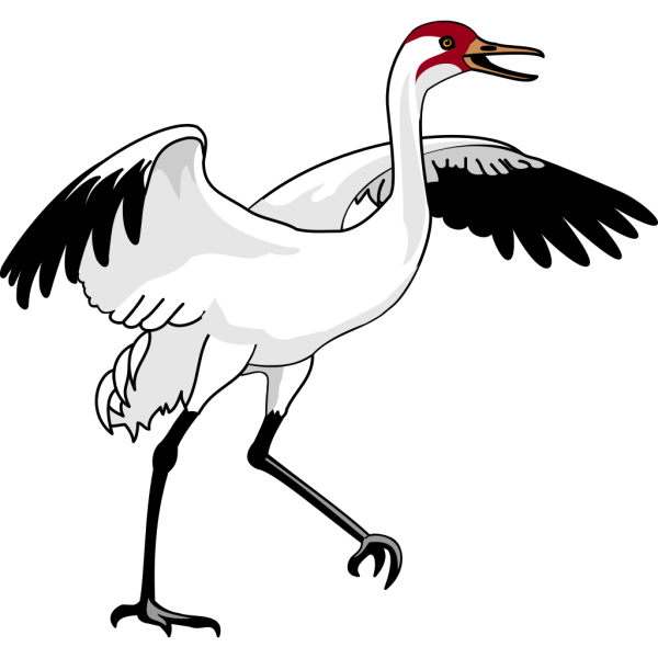 Swan 3 PNG images