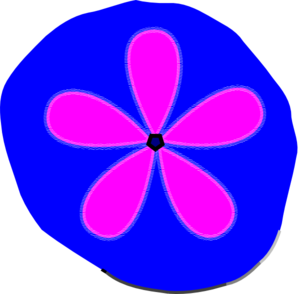 Sand Dollar  PNG Clip art