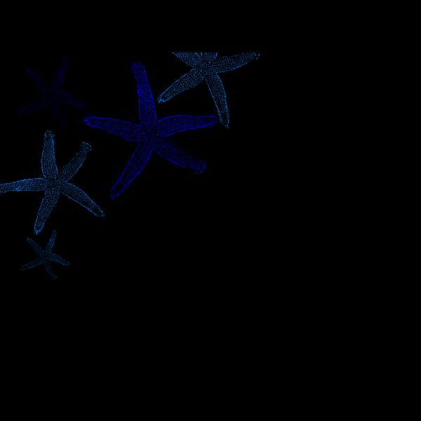 Starfish Prints PNG Clip art