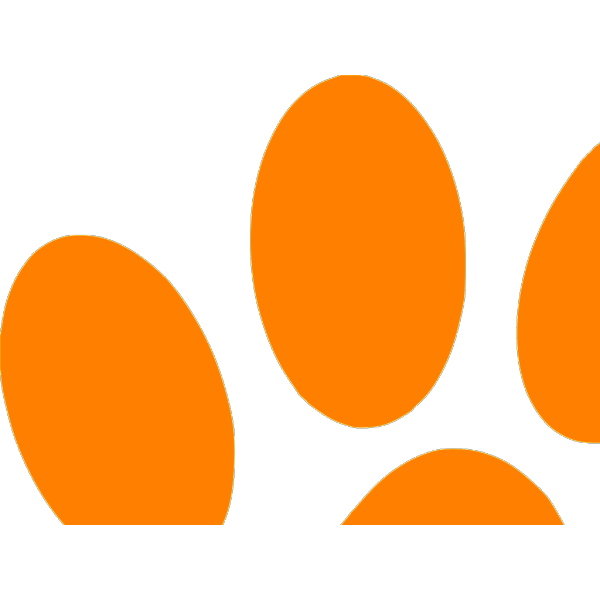 Blues Clues Orange Paw PNG Clip art