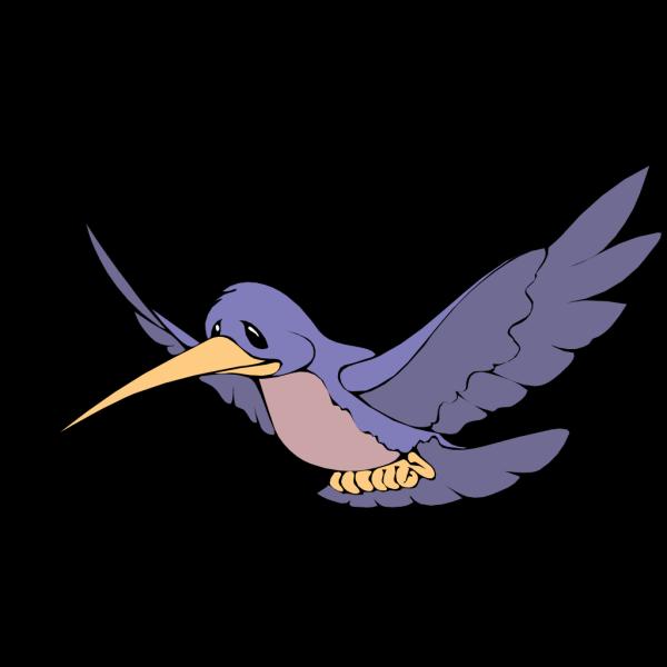 Humming Bird PNG Clip art