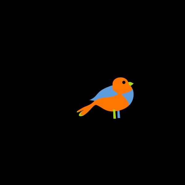 Colorful Little Bird  PNG Clip art