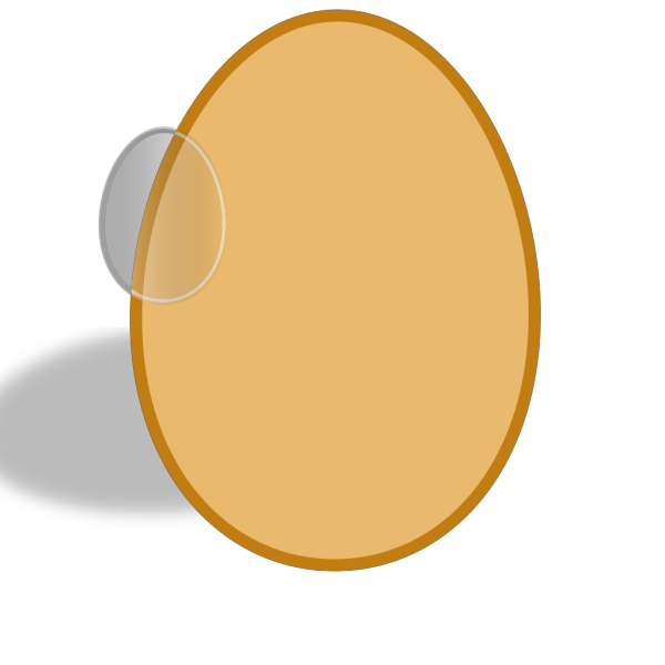 Robin S Egg Color Shell PNG Clip art