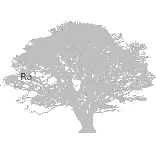 Bird Stand Tree Vine Silhouette PNG images