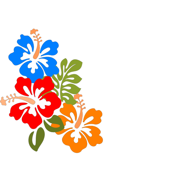 Hibiscus Flower PNG icons