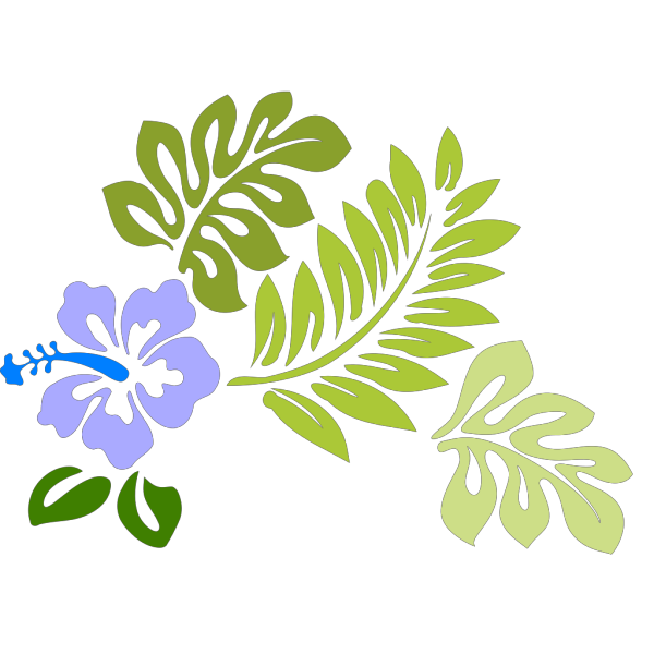 Hibiscus PNG Clip arts