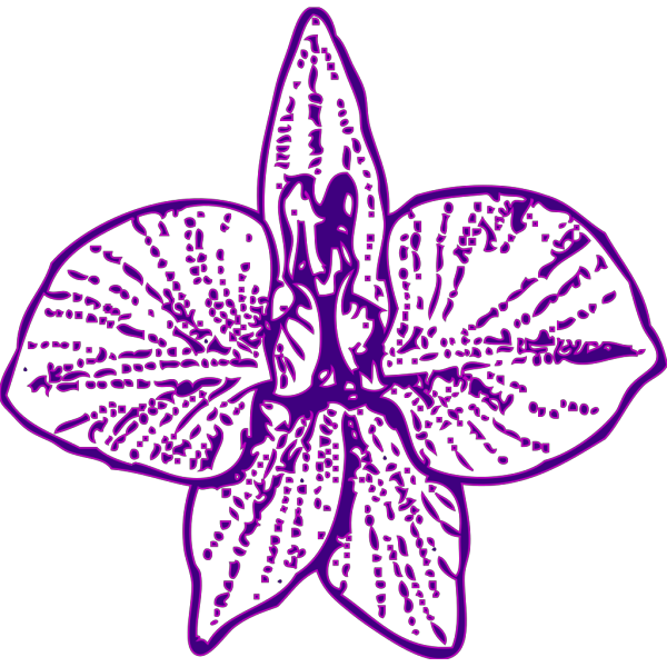 Blue Orchid Outline PNG clipart