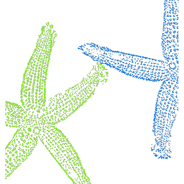 Blue And Green Starfish PNG Clip art