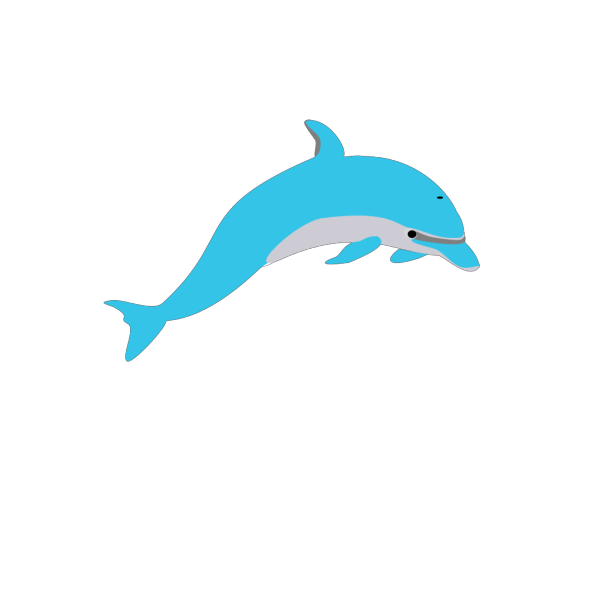 Teal Dolphin PNG Clip art