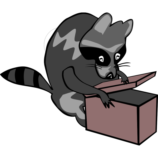 Raccoon Opening Box