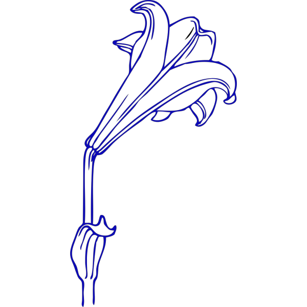 Blue Lily PNG clipart