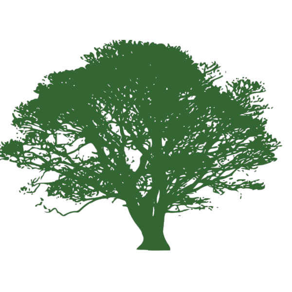 Tree For Invitation PNG Clip art