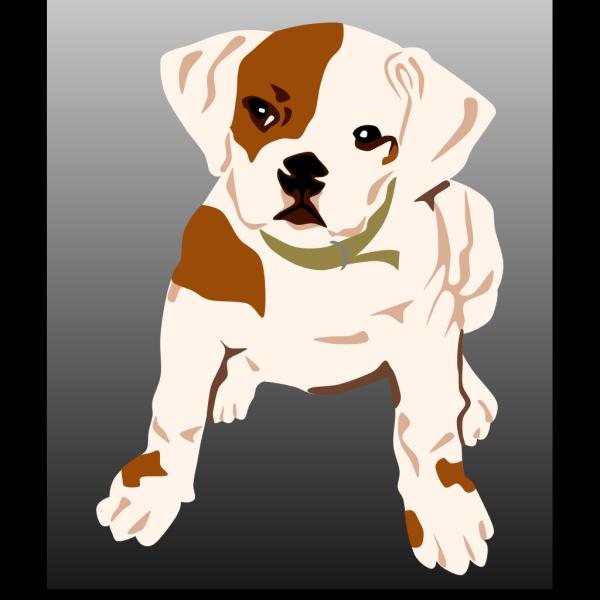 Bulldog Puppy PNG images