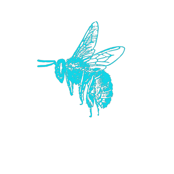Blue Bee PNG clipart