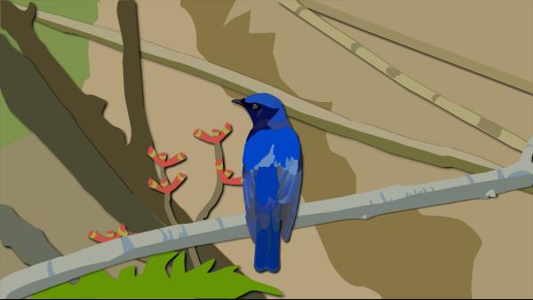 Bron Bird PNG clipart