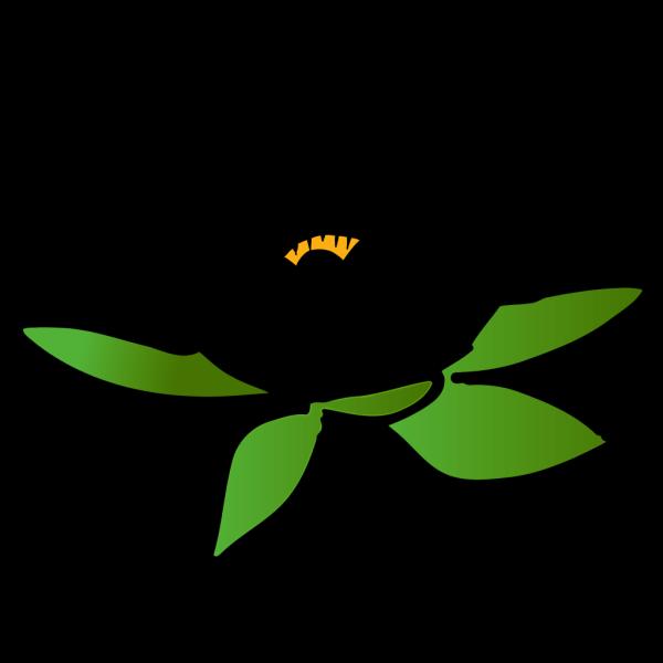 Blue Lotus Flower Picture PNG Clip art