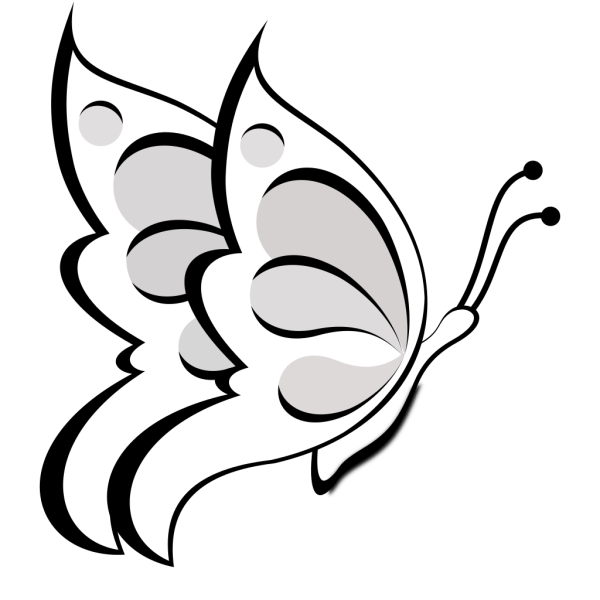 Blank Butterfly PNG icon