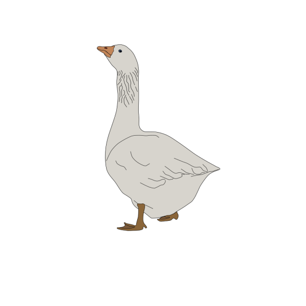 Goose PNG images