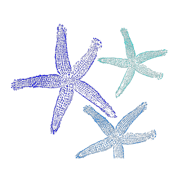 Starfish Prints In Blue PNG Clip art