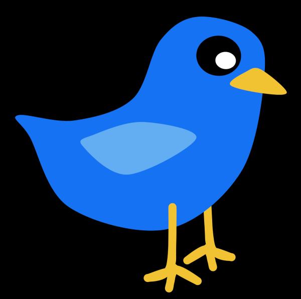 Pink Blue Bird PNG Clip art