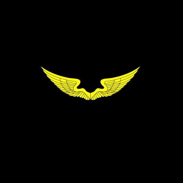 Pirate Symbol PNG images