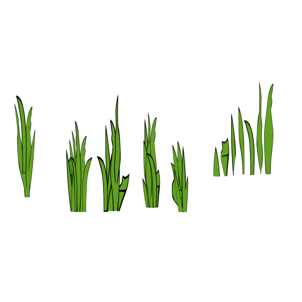 Grass Blades And Clumps PNG images