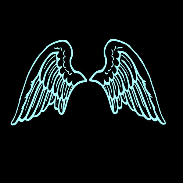 Wings  PNG Clip art