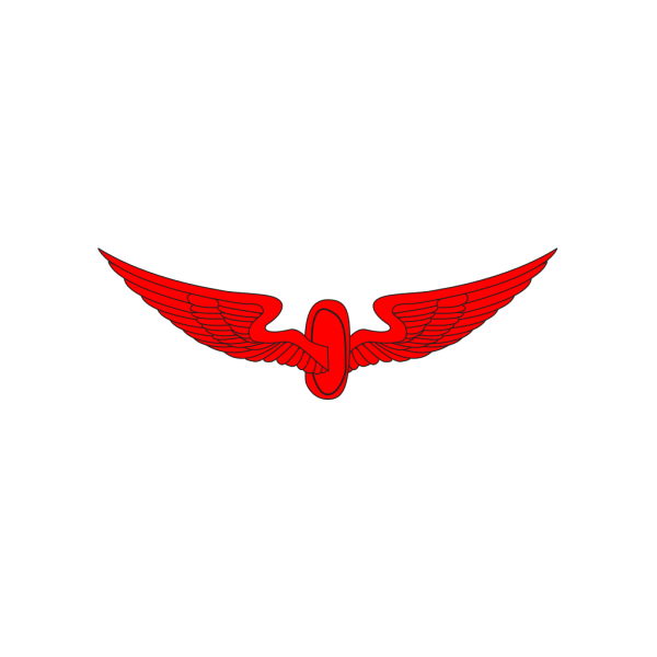 Wing PNG icons