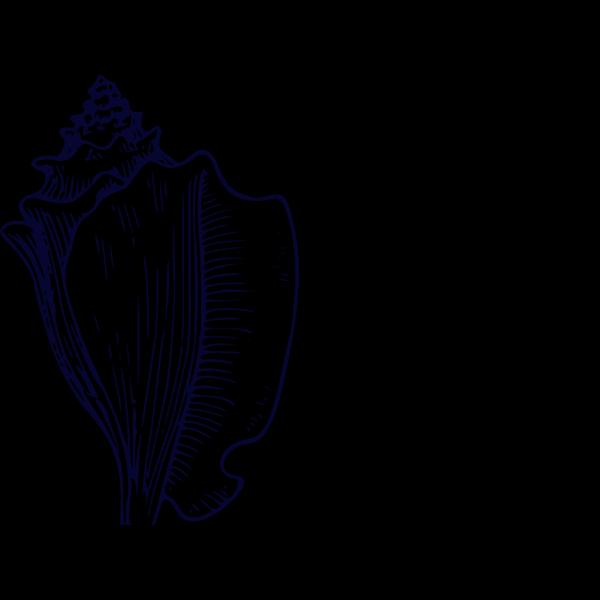 Navy Blue Shell PNG Clip art