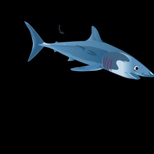 A Blue Shark PNG Clip art