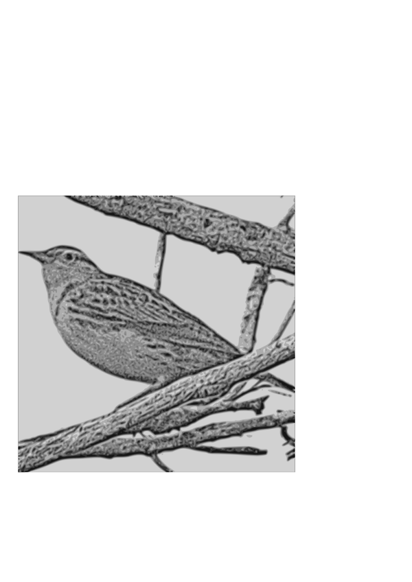 Birds On A Branch PNG Clip art