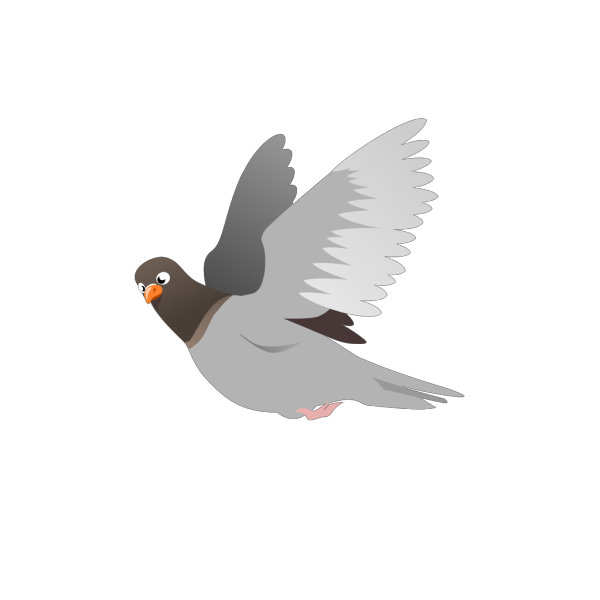 A Flying Pigeon PNG images