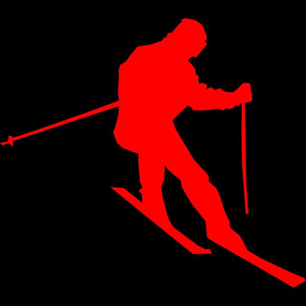 Black Skimmer PNG Clip art