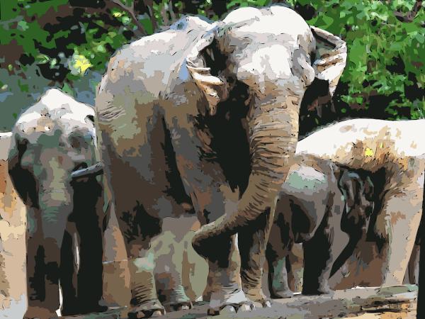 Navy Blue Gray Elephant PNG Clip art