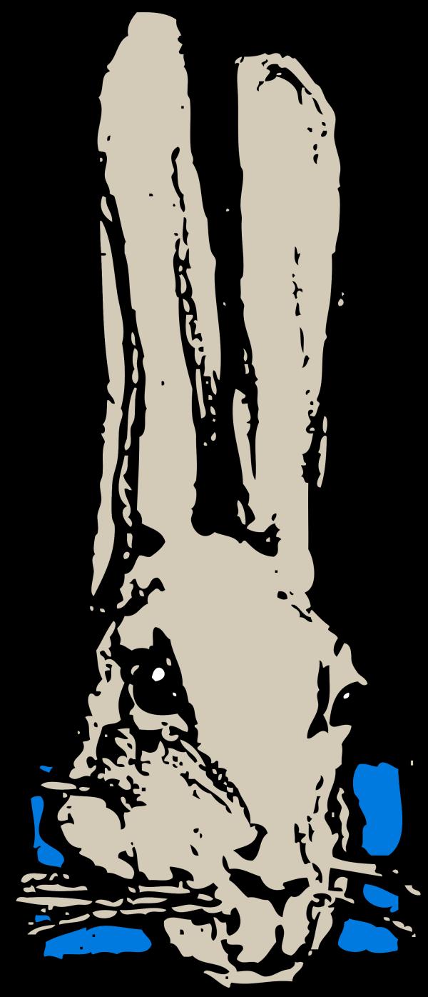 Cold Rabbit PNG Clip art