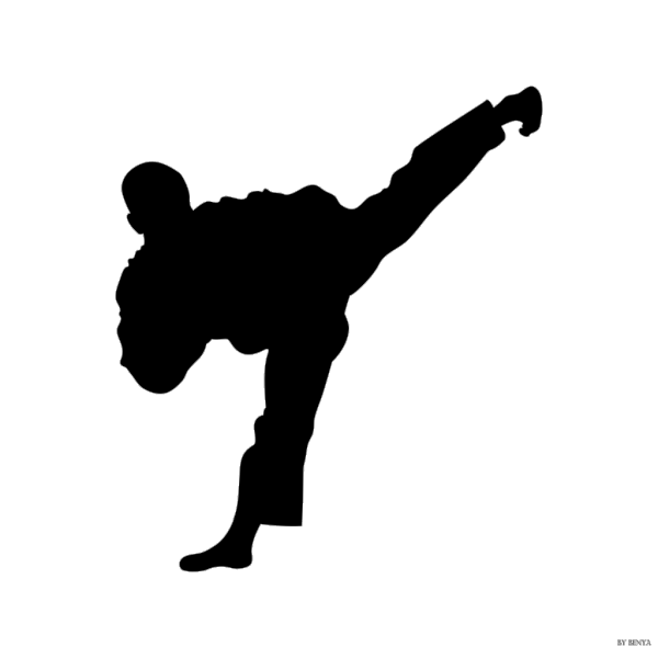Tae Kwon Do Silhouette PNG Clip art