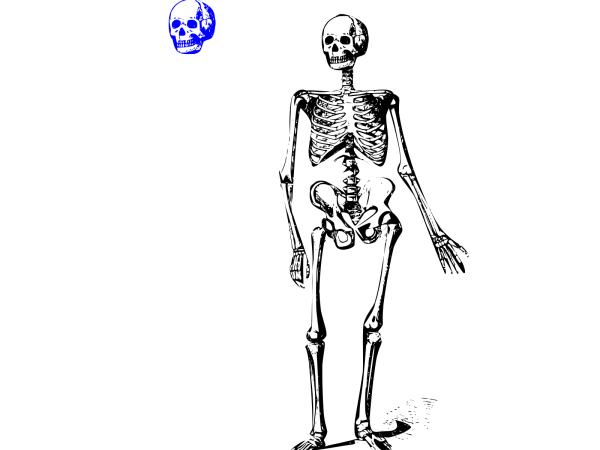 Blue Senior Skeleton Key Final PNG clipart