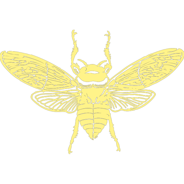 Bee Design PNG images