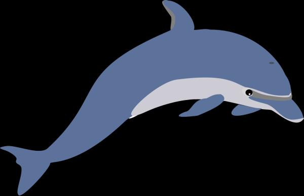Dolphin Blue Tandem PNG Clip art