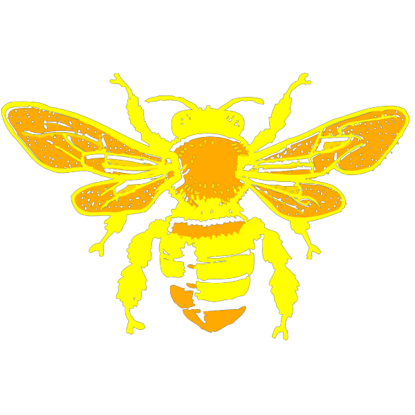 Bee2 PNG images