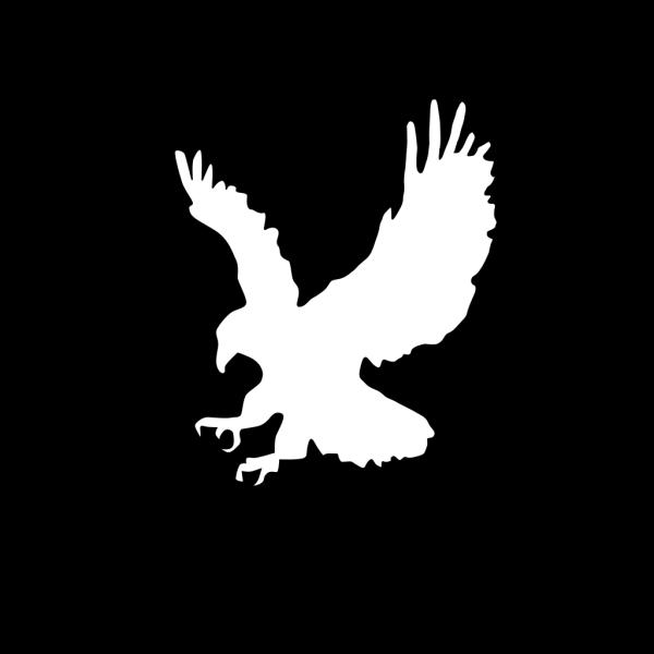 Eagle2 PNG Clip art
