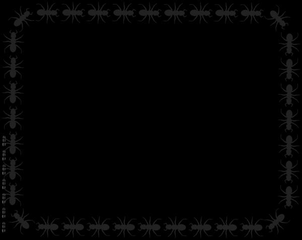 Border  PNG Clip art