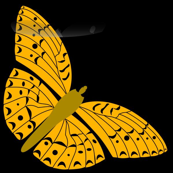 Swirl Butterfly PNG Clip art