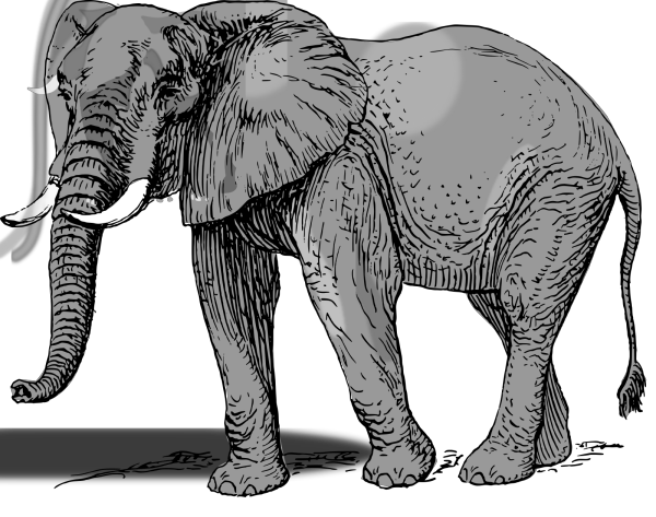 Mint Green Elephant PNG Clip art