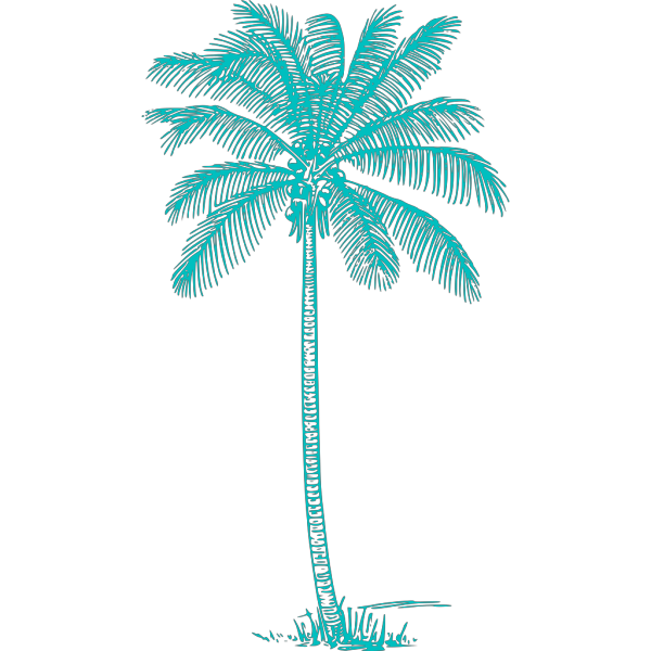 Blue Palm Tree Beach  PNG Clip art